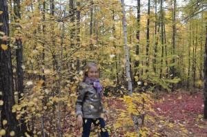 Вертецкая Валерия Золотая осень Якутии 3