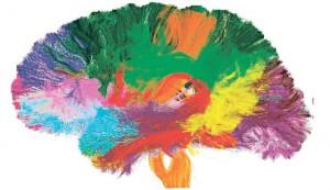 Карта-мозга-226724